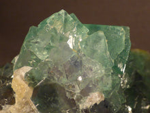 Riemvasmaak Green Fluorite Natural Specimen - 81mm, 169g