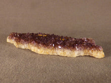 Natural Kwaggafontein Spirit Citrine Amethyst Crystal Plate - 82mm, 26g