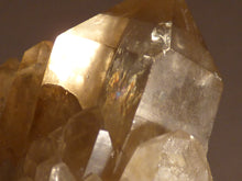 Natural Congo Citrine Cluster Crystal Point - 49mm, 61g