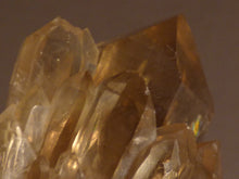 Natural Congo Citrine Cluster Crystal Point - 71mm, 59g