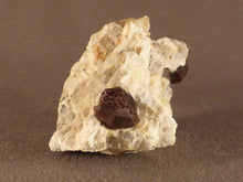 Namibian Natural Red Pyrope Garnet in Quartz Specimen - 55mm, 51g