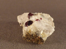 Namibian Natural Red Pyrope Garnet in Quartz Specimen - 50mm, 33g