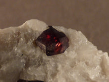 Namibian Natural Red Pyrope Garnet in Quartz Specimen - 35mm, 22g