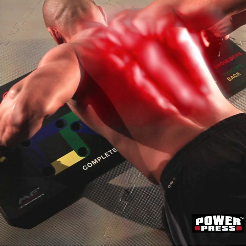 Back view of man using the power press push up board with muscles engaged shown highlighted