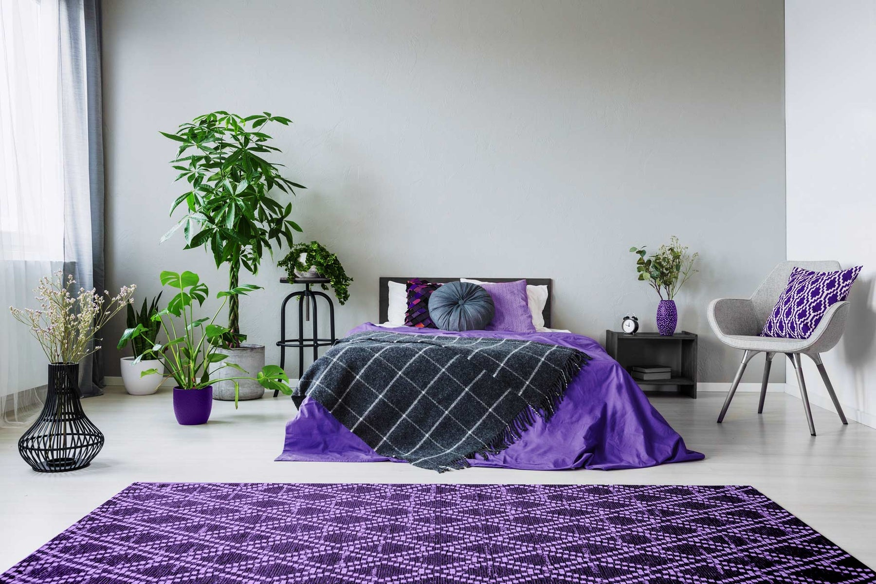 air-purifying plants in bedroom with purple rug and sheets