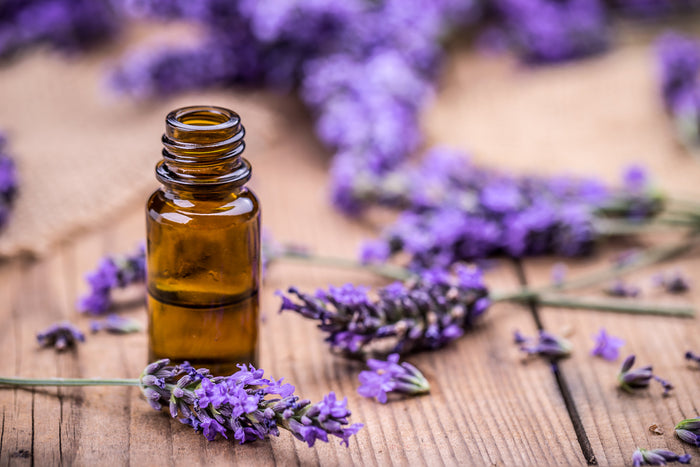 Lavender sprigs, half bottle of essential oils for sleep