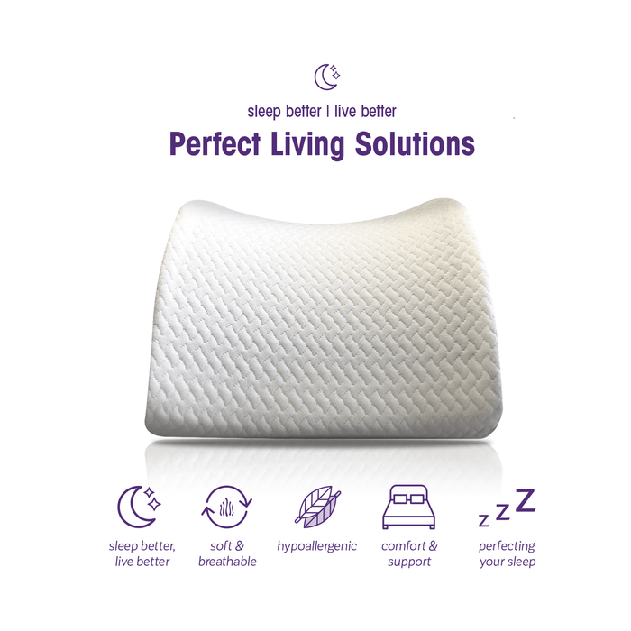 Lumbar Support Office Chair Pillow with Premium Memory Foam