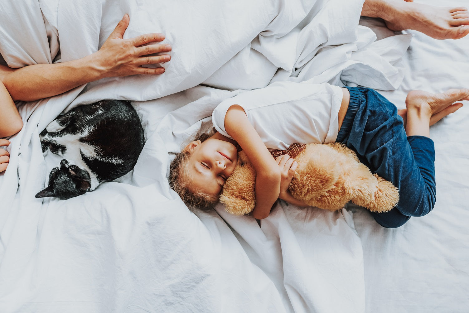 cat, man and child holding teddy bear sleep on king bed