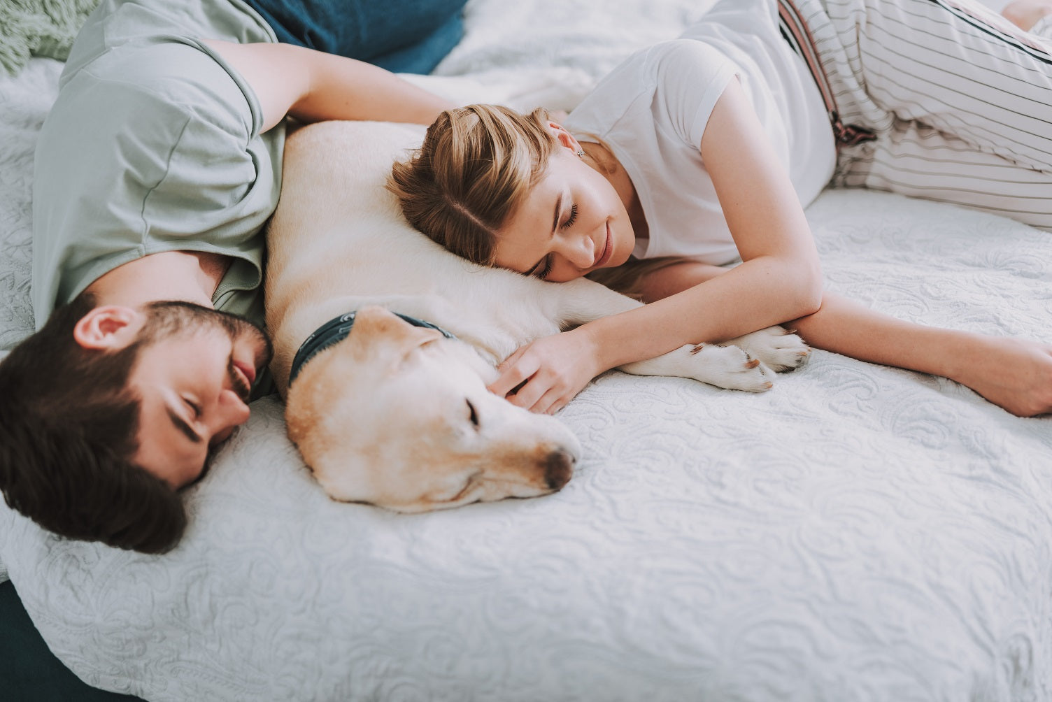 man, woman and golden lab dog sleep on queen-size bed