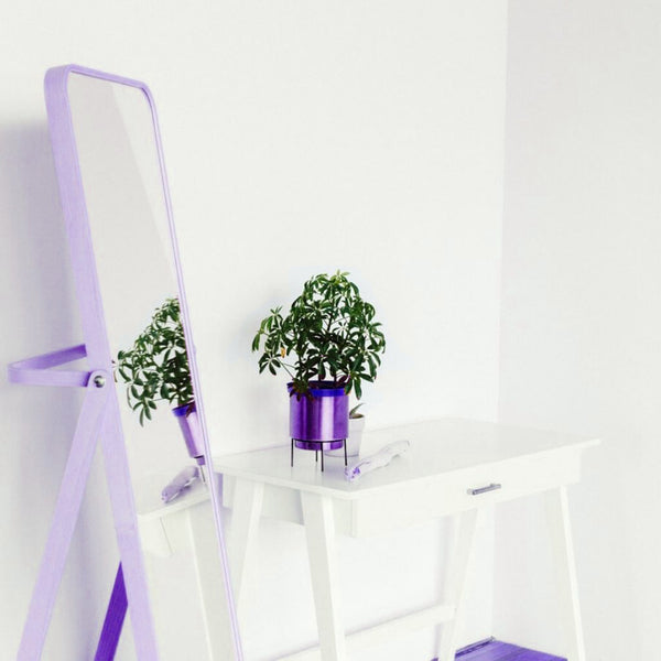 Floor length mirror next to a white table with a plant on top of it