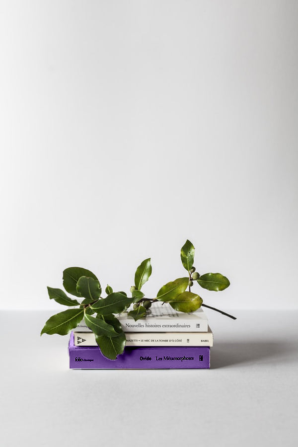 Stack of three books with a flower on top of it