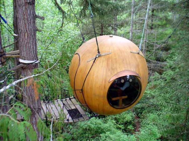Treehouse shaped like a sphere in a forest