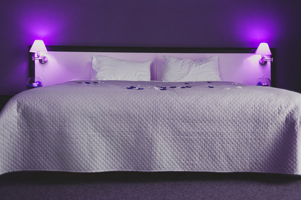 king size bed with white comforter, two pillows, purple wall