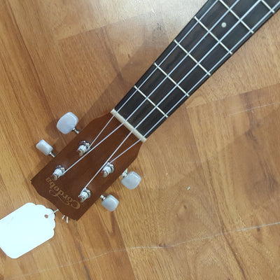 Cordoba 20TM-CE Tenor Ukulele SPLIT TOP