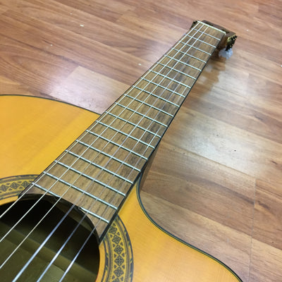 Walden N550CE Classical Acoustic Electric