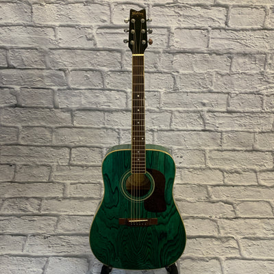 Washburn D-11 TBL Acoustic Guitar