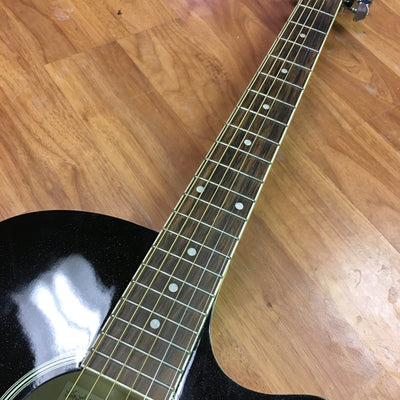 Ibanez AEG5E Thinline Acoustic Electric