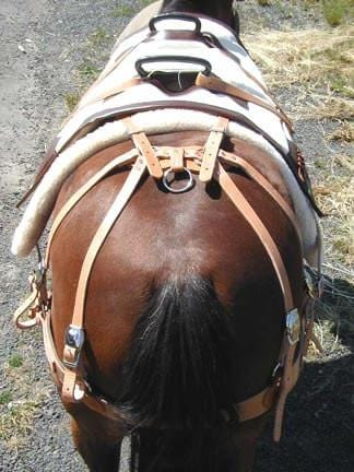 Bighorn Decker Pack Saddles