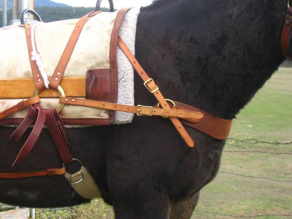 Montana Deluxe Decker Pack Saddle