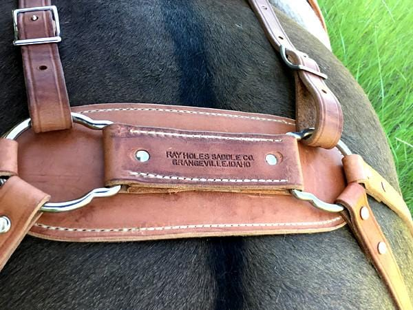 Ray Holes Decker Pack Saddle