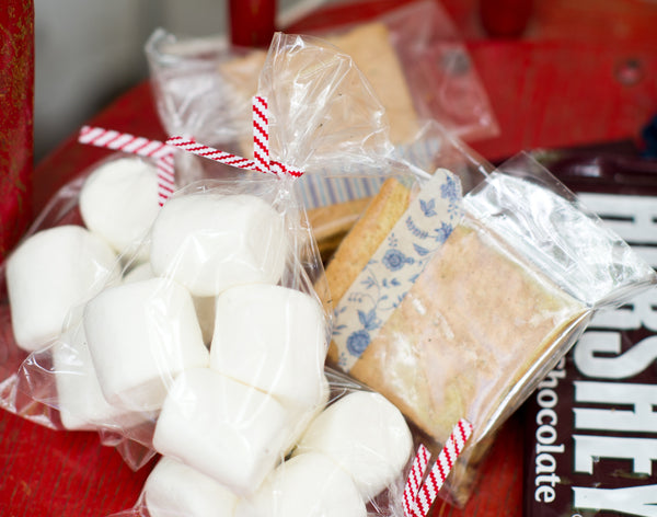 DIY campfire smore's party takeaway
