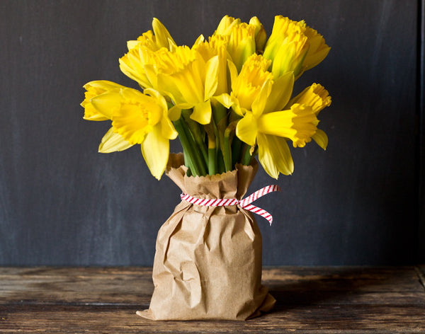 yellow tulips in brown paper bag