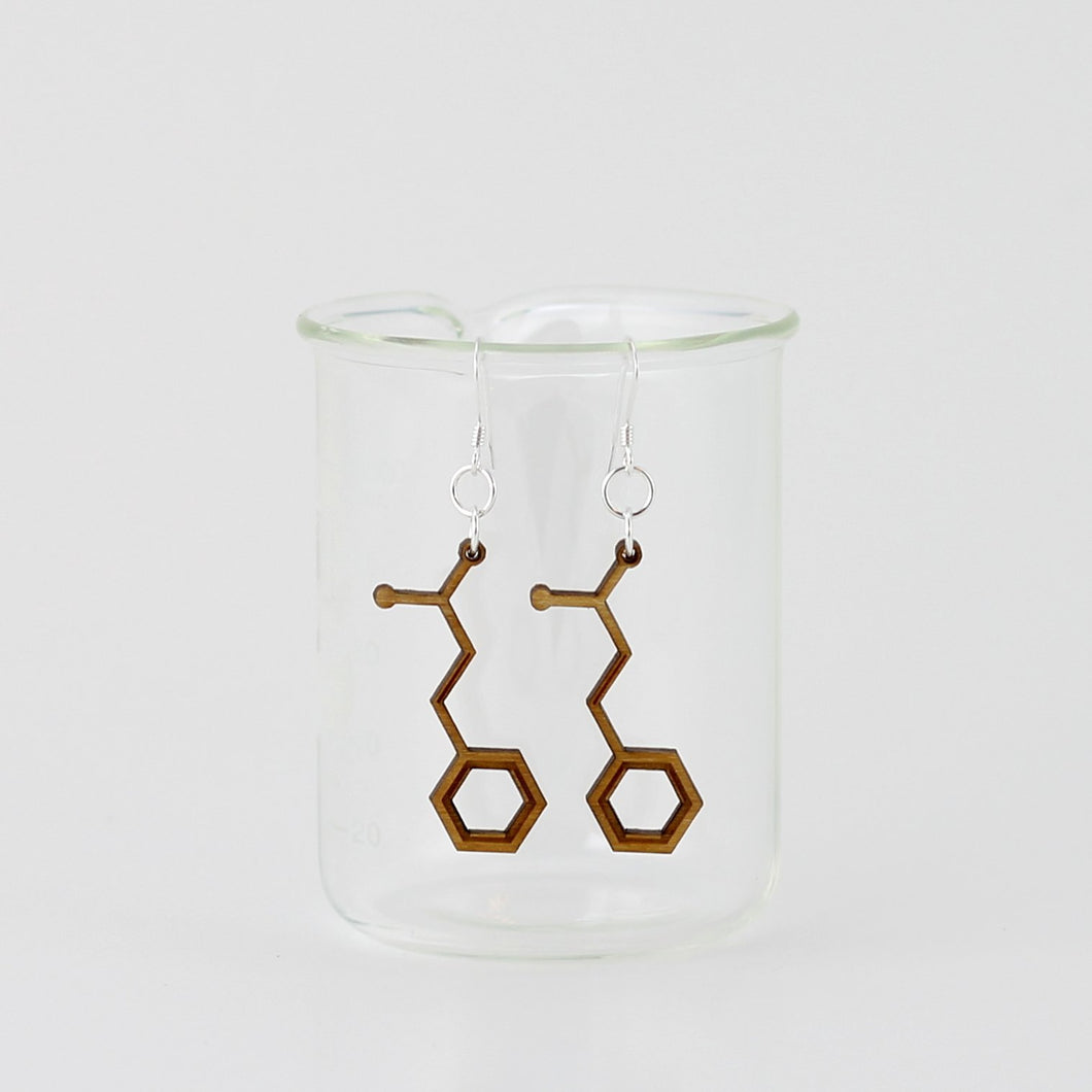 Aromatic Scented Cinnamon Molecule Earrings in Birch Plywood
