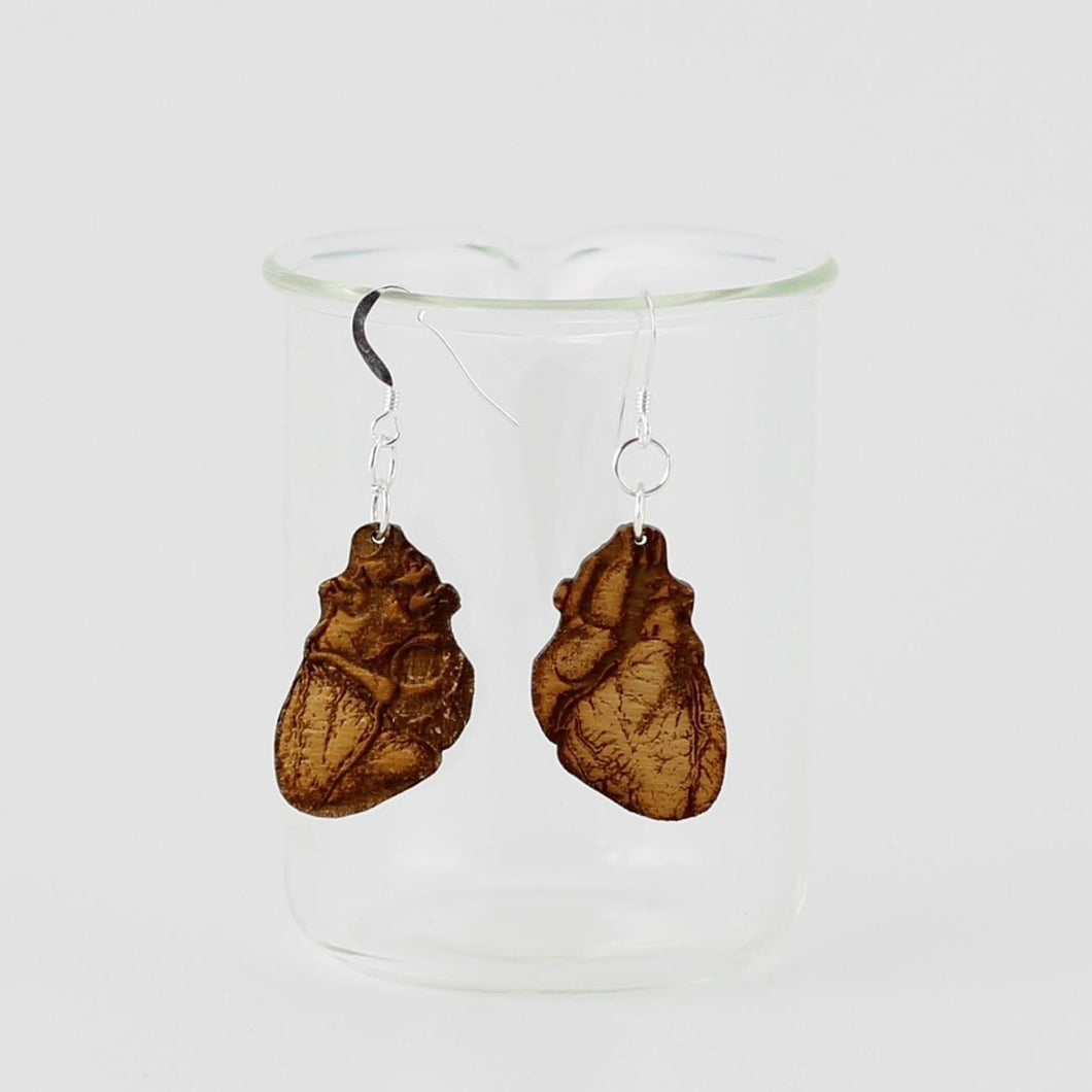 Anatomical Human Heart Earrings in Birch Plywood showing front and back designs