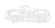 Sayed Badreya Official Website