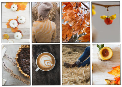 Fall Favorites Weekly Kit-Photography