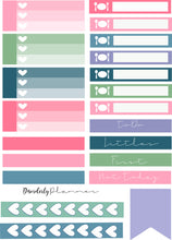 Disorderly Planner Custom Colored Labels Planner Kit - Planner stickers - Functional Sticker Kit -