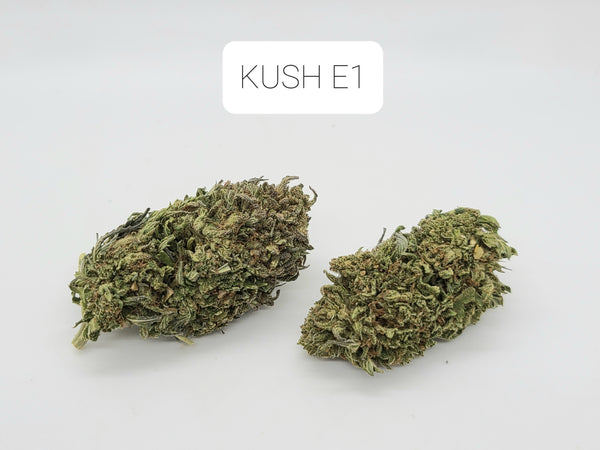 Kush E1 | Craft Flower