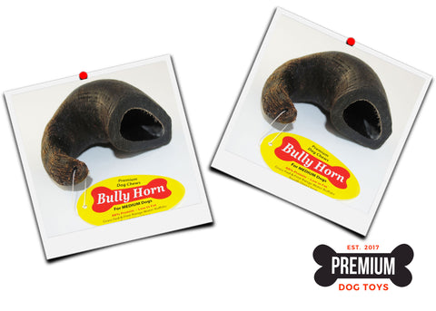 Two (2) Bully Horn Special - Water Buffalo Horn