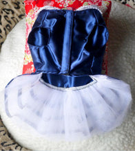 Blue and White Faux Satin Cat Dress Costume
