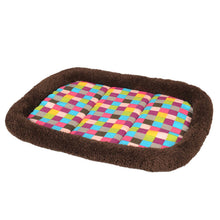Soft Cat Bed with Rainbow Checkered Cushion and Brown Trim