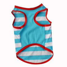 Cute Cat Costume Says 100% Awesome in White and Blue Stripes with Red Piping