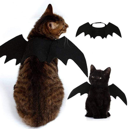 Cute Halloween Cat Costume