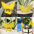 Load image into Gallery viewer, Traps Insect/Fly Sticky Trap [20 PCS] - DiyosWorld