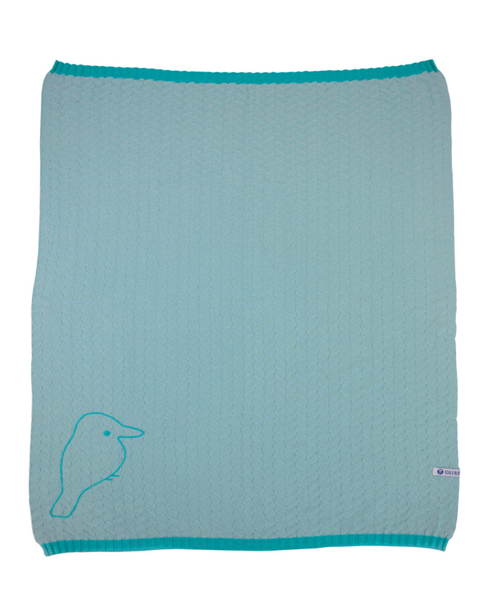 receiving baby blanket in aqua