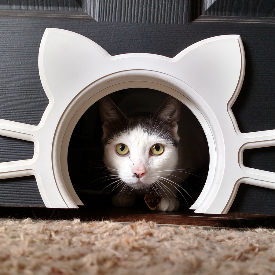 Designer Interior Cat or Pet Door