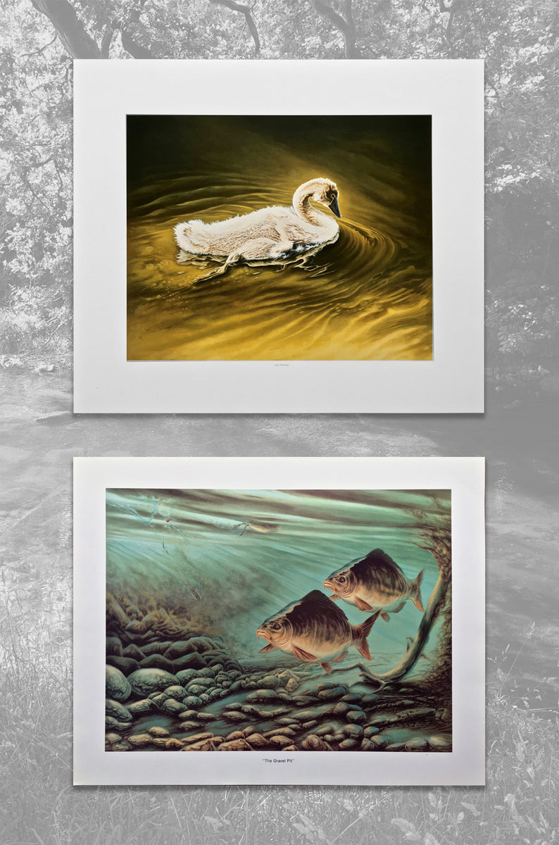 Limited Edition Prints River & Lake