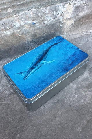 Humpback Whale Storage Tin