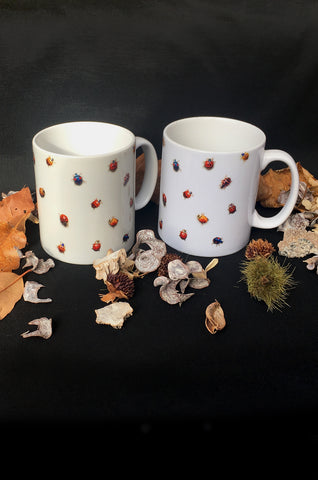 Ladybird Ceramic Mug Pair