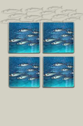 Mackerel 2d Shoal Coasters