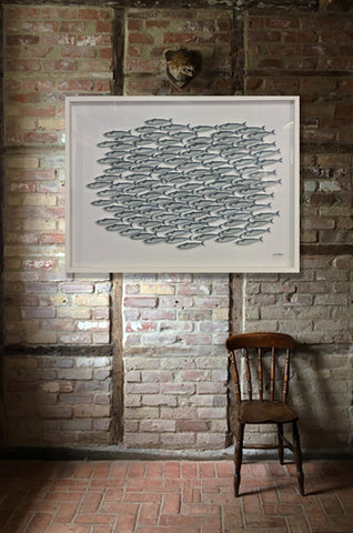 Mackerel Shoal Graphic Display