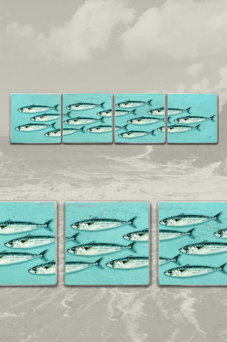 Mackerel Shoal Split Coasters