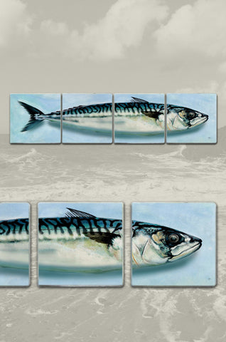 Mackerel Split Coasters