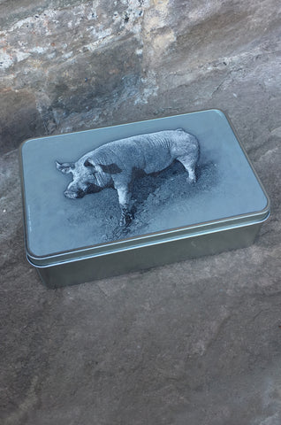 Welsh Sow Storage Tin