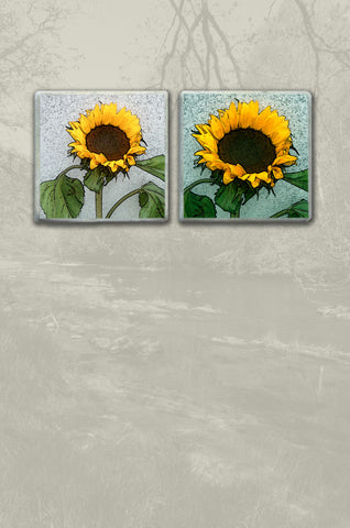 Sunflower Coaster Pair
