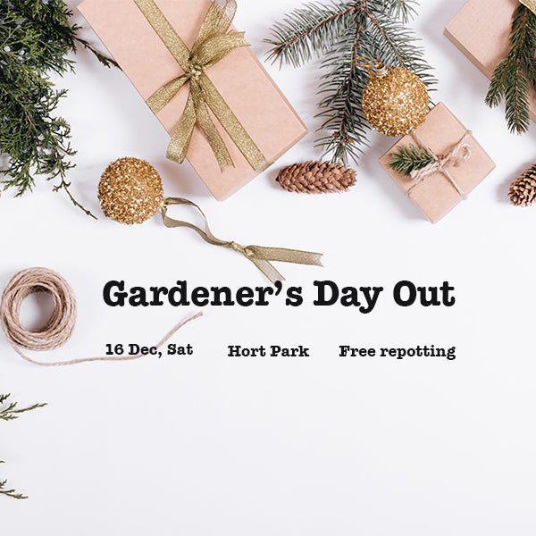 Indoor Gardeners' Day Out